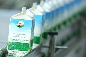 Khó khăn của Sữa Mộc Châu nhấn chìm lợi nhuận GTN