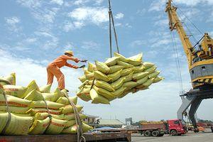 Cắt giảm 50% điều kiện kinh doanh để giảm chi phí logistics