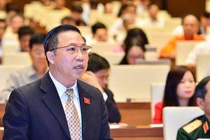 Đại biểu lại đề nghị xem xét khởi tố vụ phân bón Thuận Phong