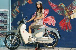 Huyền thoại Honda Super Cub C125 về Việt Nam, giá 85 triệu đồng