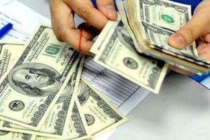 Tỷ giá trung tâm lại lên đỉnh mới, ngân hàng giữ nguyên giá mua bán USD