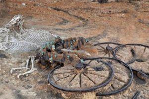 Tìm thấy cỗ xe cả người và ngựa thời đại đồ sắt ở Anh
