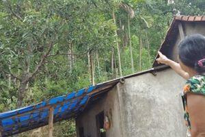 Quảng Nam: 36 hộ dân nơm nớp lo sợ núi Rẫy Tranh Lớn sạt lở