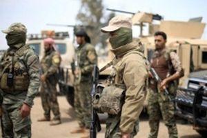 Chính phủ Syria nỗ lực tìm giải pháp chính trị