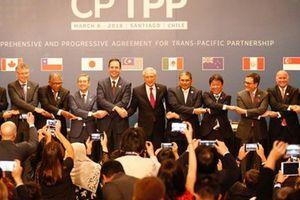 CPTPP đạt đột phá, kích hoạt '60 ngày đếm ngược'
