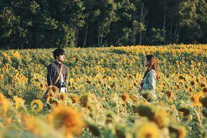 Điện ảnh Việt đang lạc lõng với thế giới