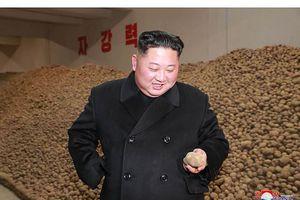 Tái xuất sau 19 ngày, ông Kim Jong-un đội tuyết thăm nhà máy khoai tây