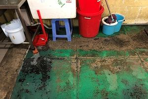 Xử phạt công ty gây ra vụ ngộ độc hàng loạt tại quận Tân Phú 84 triệu đồng