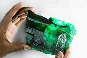 Thợ mỏ đào được viên ngọc lục bảo 450 triệu năm tuổi giá 60 tỷ