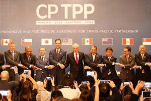 60 ngày nữa hiệp định CPTPP chính thức có hiệu lực