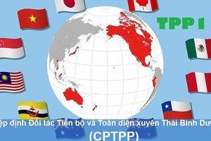 CPTPP ấn định thời điểm hiệu lực: Bước ngoặt lớn với Vành đai Thái Bình Dương