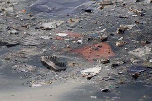 Khoảnh khắc máy bay lao xuống, nổ lớn dưới biển qua lời kể ngư dân