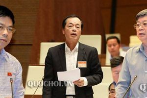 Bộ trưởng Xây dựng 'không dám hứa' về lộ trình chấm dứt vi phạm xây dựng