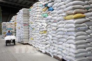 Xây dựng và quảng bá thương hiệu cho gạo chất lượng cao của Việt Nam