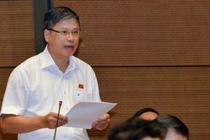 Vụ phân bón Thuận Phong: 'Vắt' qua 2 kỳ họp Quốc hội chưa xong!?