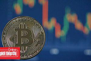 Bitcoin ổn định sau ngày tồi tệ nhất trong gần 3 tuần