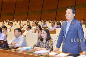 Bộ trưởng Bộ TN&MT Trần Hồng Hà:Nỗ lực tạo đột phá, hoàn thiện chính sách, pháp luật của ngành Tài nguyên & Môi trường