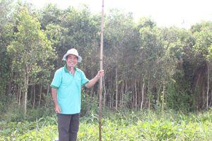Kiểm lâm Long An nỗ lực giữ rừng