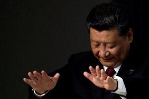 Chủ tịch Tập Cận Bình bắt đầu quan ngại, Tổng thống Donald Trump chưa nương tay