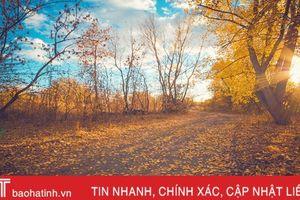 Mùa thu vàng nước Nga qua góc ảnh của du học sinh Hà Tĩnh
