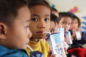 Nên bổ sung sữa hạt, phô mai vào chương trình sữa học đường
