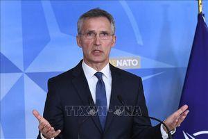 NATO sẵn sàng tiếp tục đàm phán với Nga về INF