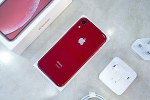 Dù giá rẻ nhưng đây là 5 lý do bạn không nên mua iPhone Xr
