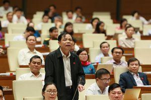 Bộ trưởng Nguyễn Xuân Cường nói về 4 nút thắt phát triển cây Điều