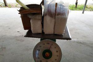 Thanh Hóa: Bắt 2 vụ vận chuyển chất ma túy số lượng hơn 11kg trong cùng một ngày
