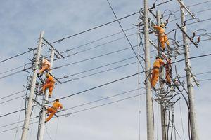 EVN khuyến cáo thi công các công trình gần đường dây, tránh tai nạn điện