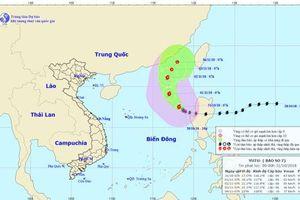 Hướng dẫn hơn 70.000 tàu thuyền vào nơi tránh bão số 7 an toàn