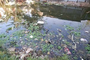 Một dòng sông chết dần vì rác