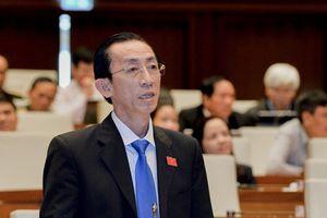 Đại biểu Quốc hội đề nghị có phương án chủ động ứng phó rủi ro khi tham gia CPTPP