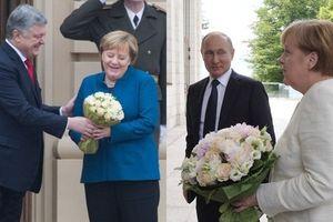 'Cuộc chiến hoa hồng' giữa ông Putin, Poroshenko và bà Merkel