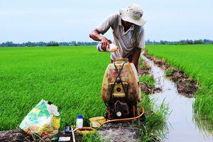 Đừng để tồn dư thuốc bảo vệ thực vật chặn đường xuất khẩu nông sản