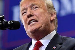 Ông Trump bất ngờ đe dọa nổ súng với di dân ném đá