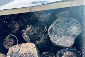 Bắt 3 xe tải chở hơn 40m³ gỗ lậu chờ tẩu tán
