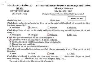 Đáp án đề thi tham khảo môn Sinh học vào lớp 10 THPT Hà Nội