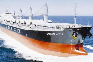 Lỗ thêm 52 tỷ đồng quý III, Vosco lỗ lũy kế lên đến 897 tỷ đồng