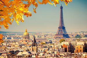 Tuần lễ văn học Pháp: Từ trang sách đến màn ảnh
