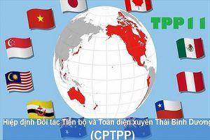 Tham gia CPTPP: Tư duy phải 4.0 chứ 2.0 thì khó thay đổi