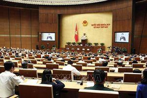 Sáng 2/11: Chủ tịch nước trình bày Tờ trình đề nghị Quốc hội phê chuẩn Hiệp định CPTPP