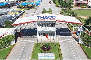 Hậu thỏa thuận chiến lược với HAGL Agrico, Thaco đăng tuyển Giám đốc kinh doanh sản phẩm nông nghiệp