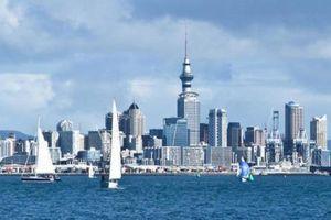New Zealand đứng đầu thế giới về môi trường kinh doanh