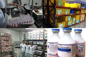 Vacxin lở mồm long móng đã được sản xuất thành công tại Việt Nam