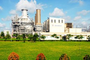 Nhiệt điện Phú Mỹ: Luôn coi trọng bảo vệ môi trường