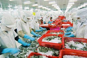 Xây dựng kịch bản tiết kiệm năng lượng hiệu quả cho ngành thủy sản và gỗ Việt