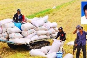 Truy nã đối tượng lừa bán lúa