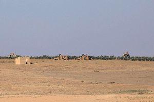 Quân đội Mỹ và Thổ Nhĩ Kỳ tuần tra chung tại phía bắc Syria