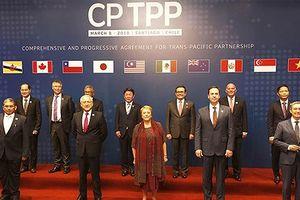 Infographics: Hiệp định CPTPP mang đến nhiều cơ hội cho Việt Nam